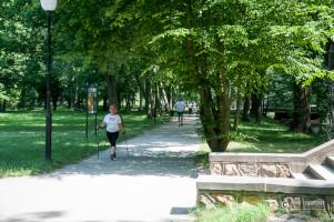 Park Dworski