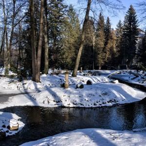 Park dworski w Iłowej zimą
